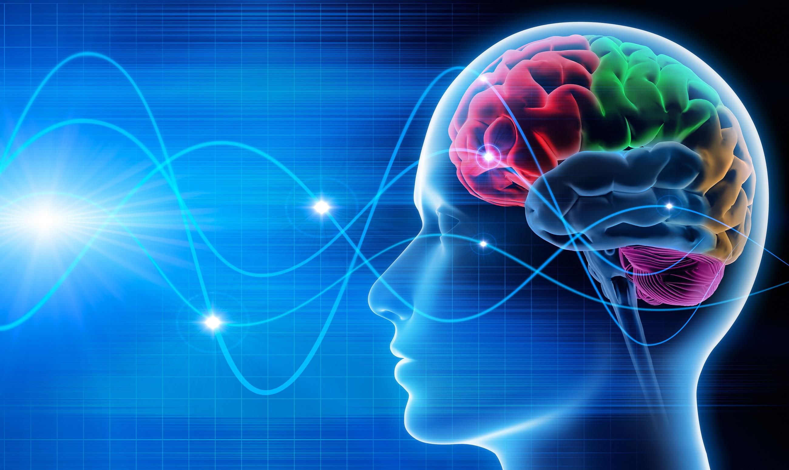 Je hersenen beïnvloeden
